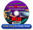 PLR4Newbies-Videos - make more money from your website