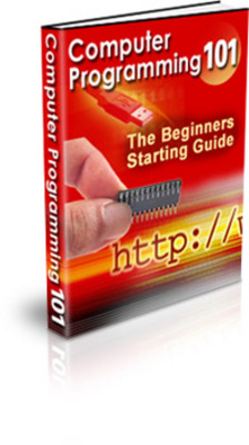 Product picture ComputerProgramming101PLR - make more money from website
