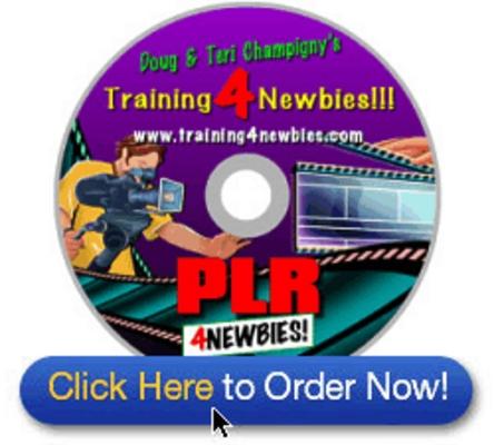 Product picture PLR4Newbies-Videos - make more money from your website